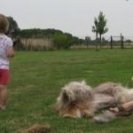 Maman brosse five... Lucie surveille l'arrivée de la tondeuse...